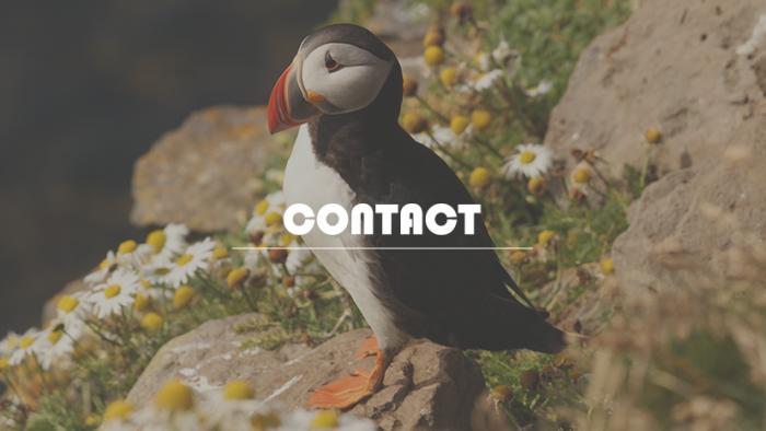 icatch_contact