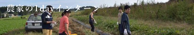 farmer.1dayintern